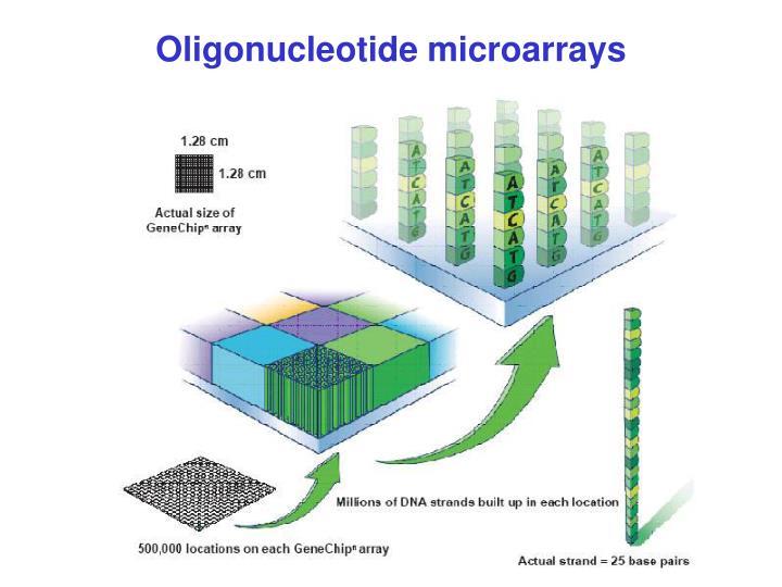 Oligonucleotide microarrays