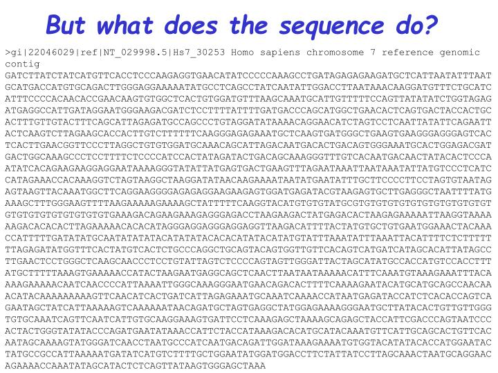 But what does the sequence do?