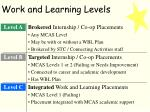 work and learning levels1