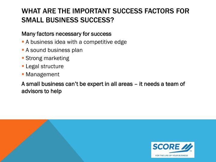 What are the important success factors for small business success?