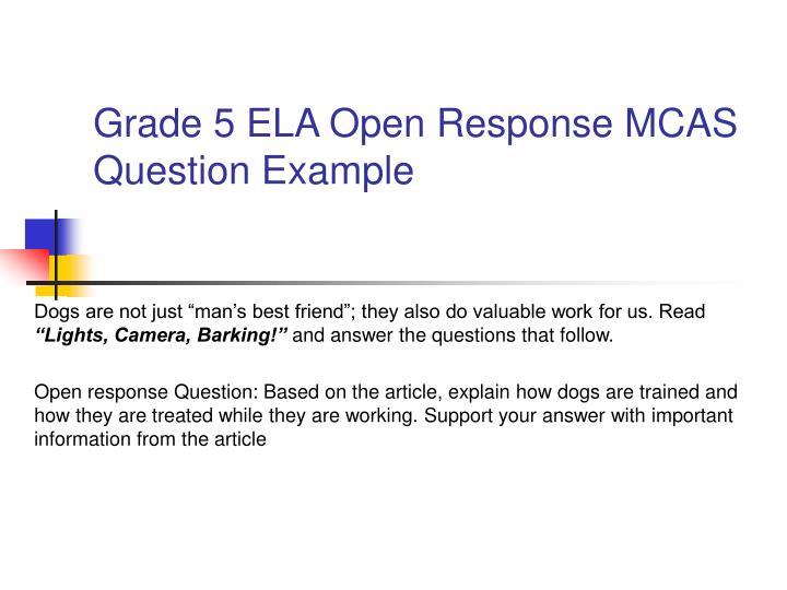 Grade 5 ELA Open Response MCAS Question Example