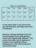 high vs low marbling1