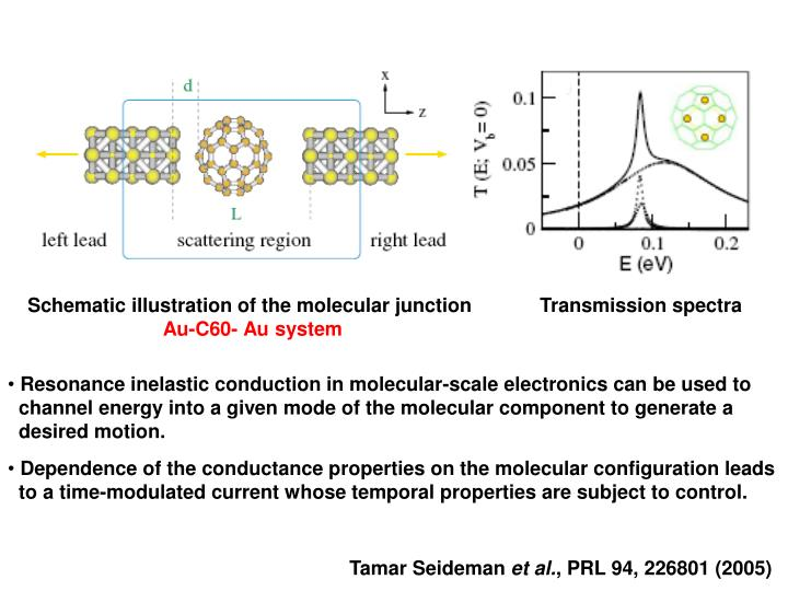 Schematic illustration of the molecular junction