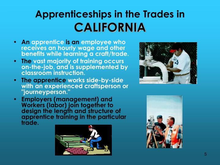 Apprenticeships in the Trades in