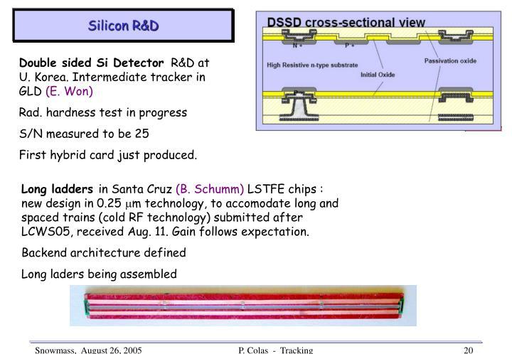 Silicon R&D