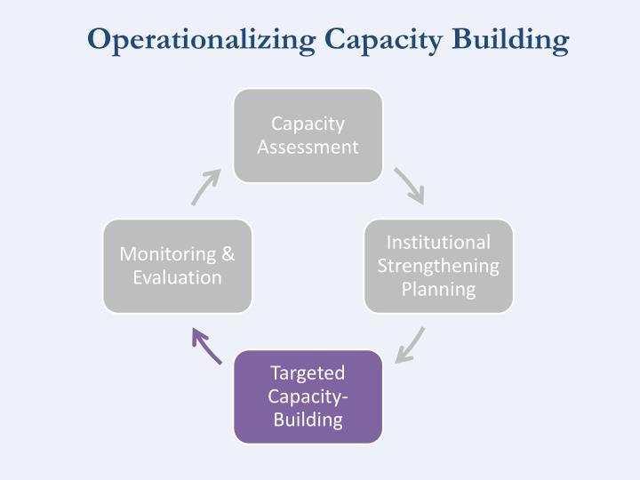 Operationalizing Capacity Building
