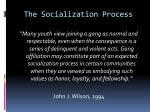 the socialization process