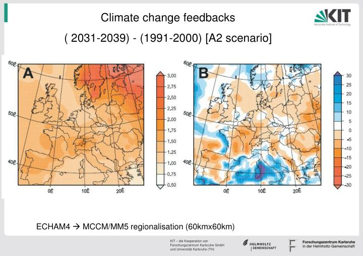Climate change feedbacks