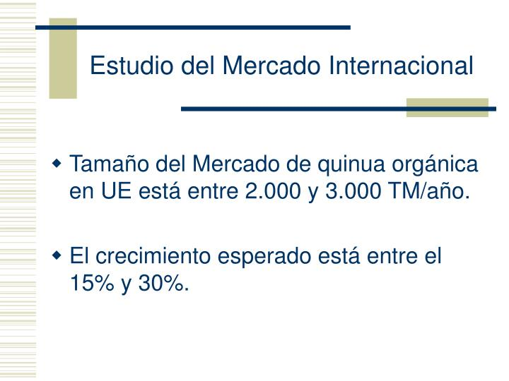 Estudio del Mercado Internacional