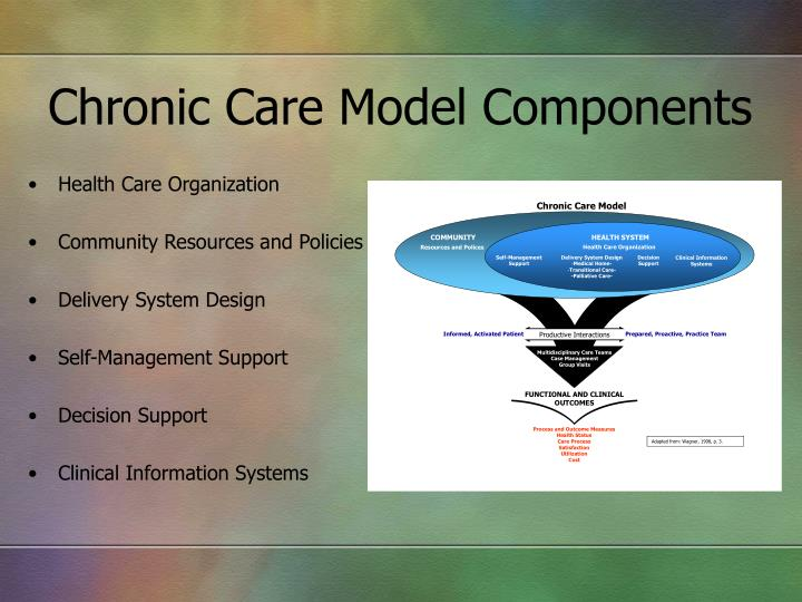 Chronic Care Model Components