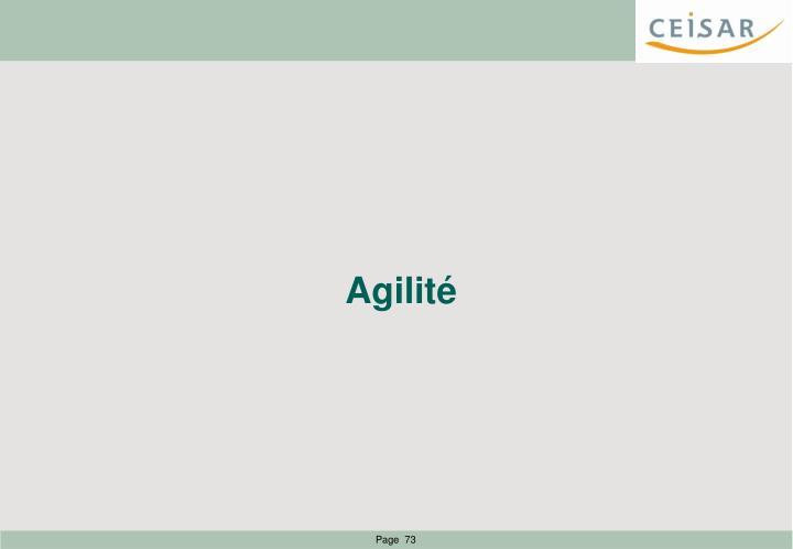Agilité
