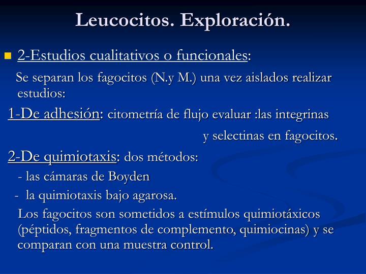 Leucocitos. Exploración.