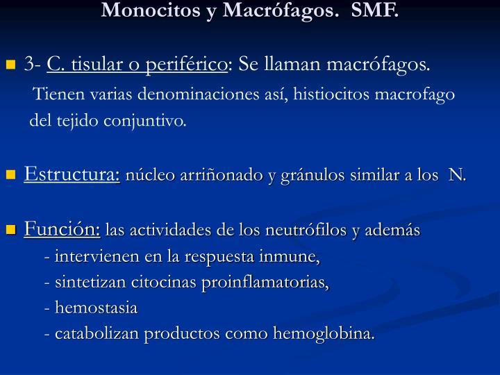 Monocitos y Macrófagos.  SMF.