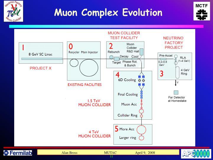 Muon Complex Evolution