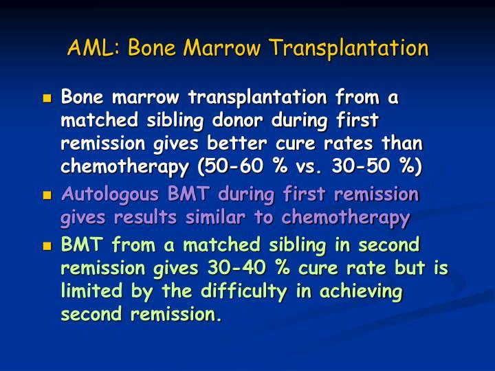AML: Bone Marrow Transplantation
