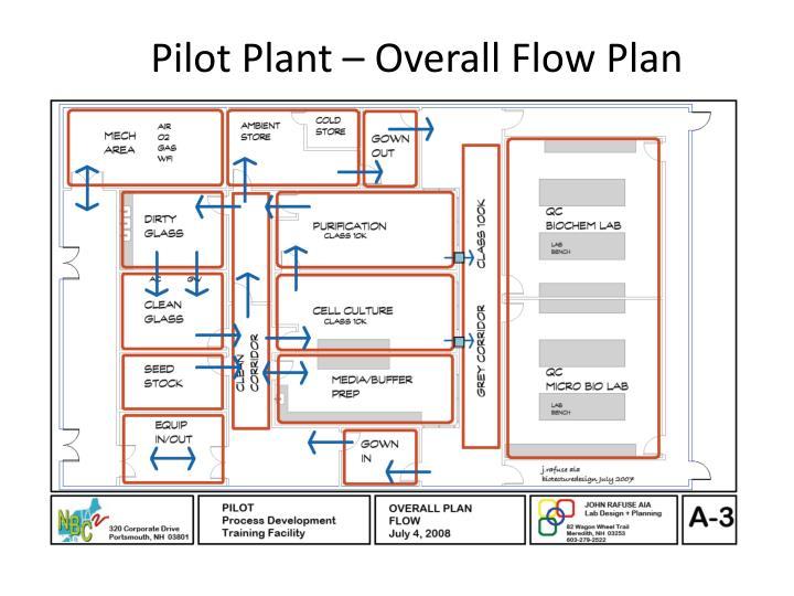 Pilot Plant – Overall Flow Plan