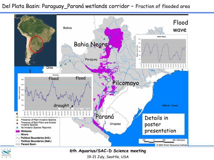 Del Plata Basin: Paraguay_Paraná wetlands corridor –