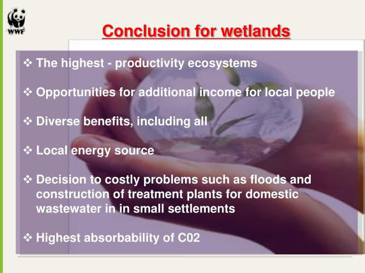 Conclusion for wetlands