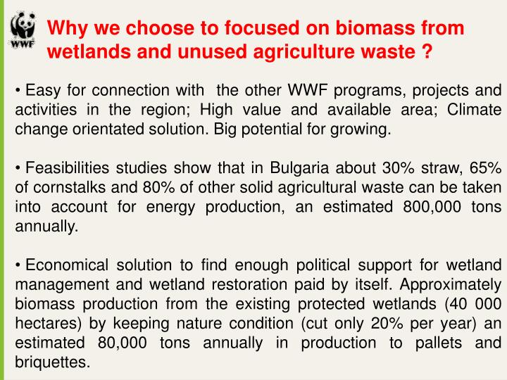 Why we choose to focused on biomass from wetlands and unused agriculture waste ?
