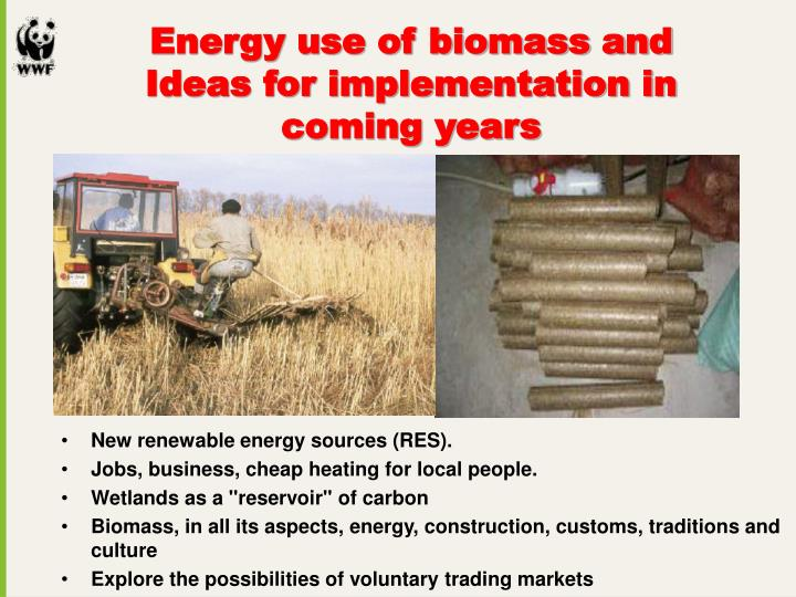 New renewable energy sources (RES).