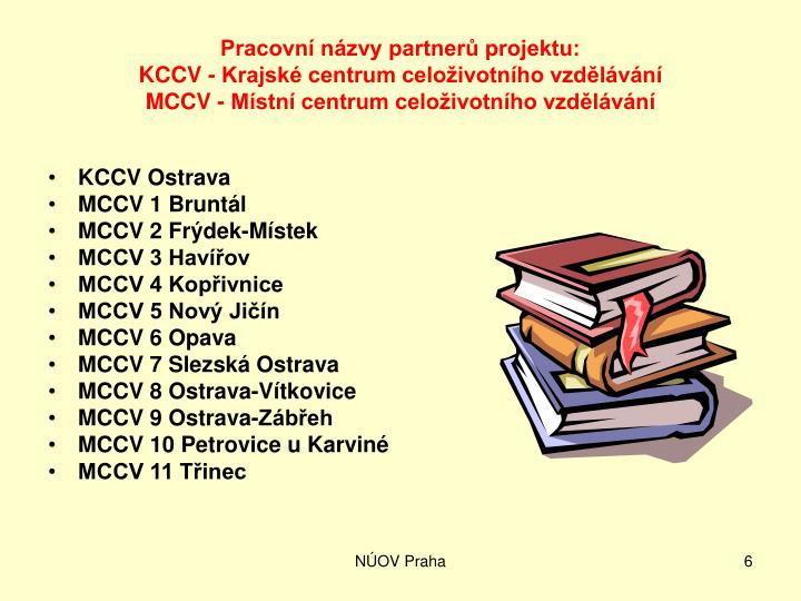 Pracovní názvy partnerů projektu: