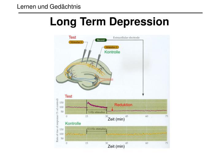 Long Term Depression