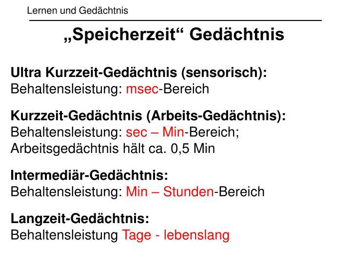 """""""Speicherzeit"""" Gedächtnis"""