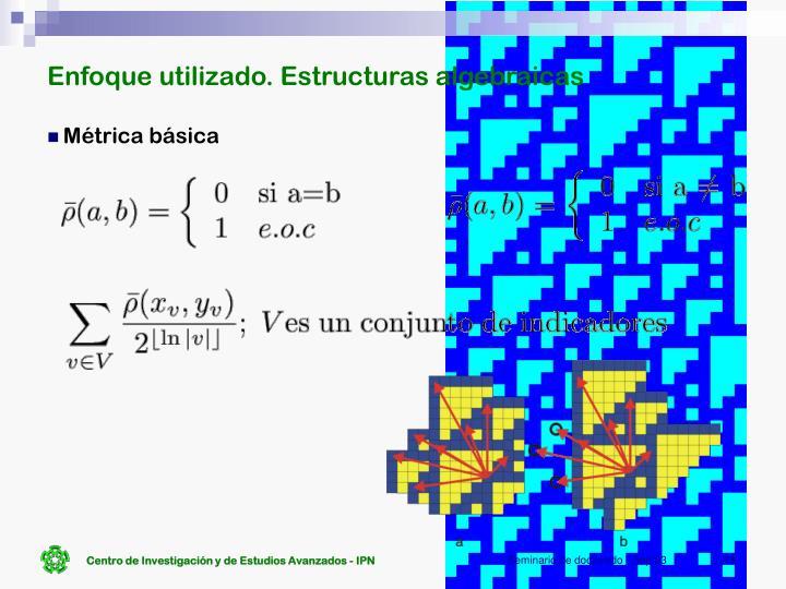 Enfoque utilizado. Estructuras algebraicas