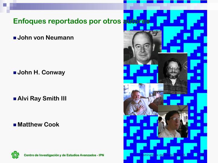 Enfoques reportados por otros autores