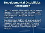 developmental disabilities association