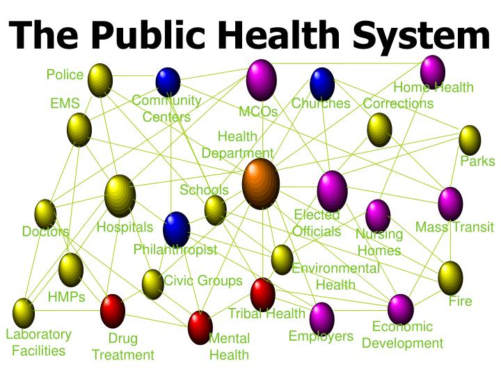 The Public Health System