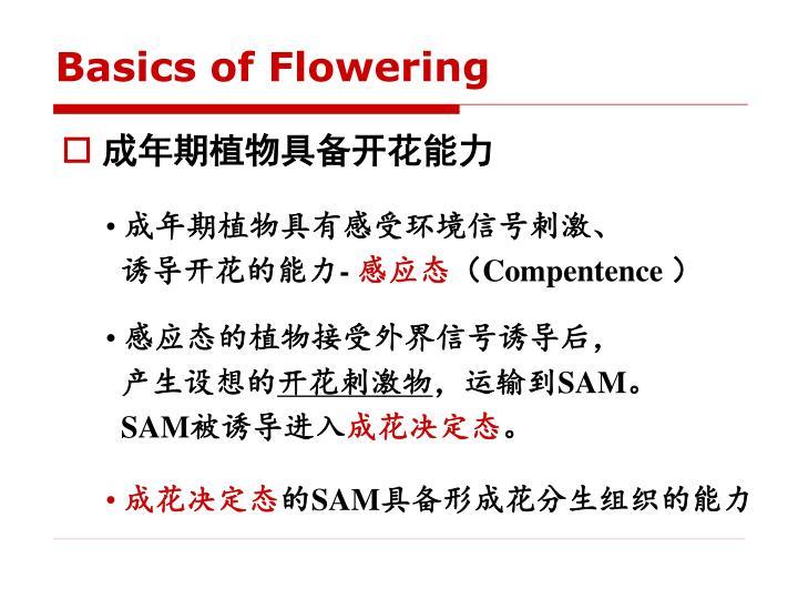 Basics of Flowering
