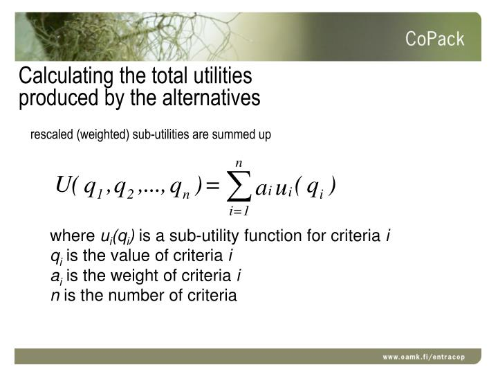 Calculating the total utilities