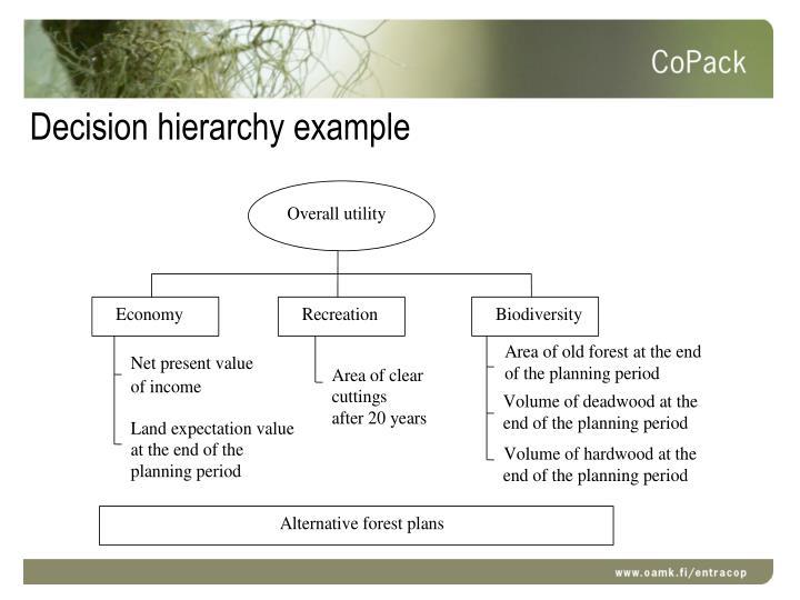 Decision hierarchy example