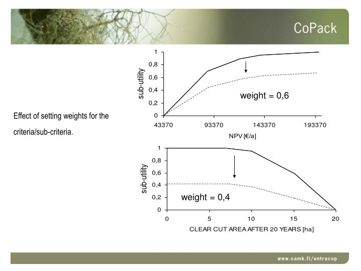 Effect of setting weights for the criteria/sub-criteria.