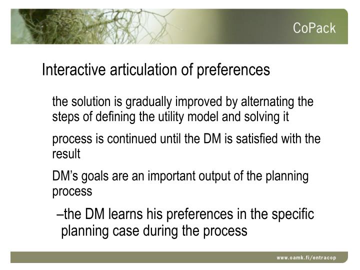 Interactive articulation of preferences