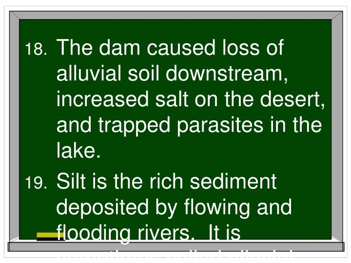 The dam caused loss of alluvial soil downstream, increased salt on the desert, and trapped parasites in the lake.