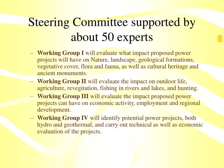 Steering Committee supported by about 50 experts