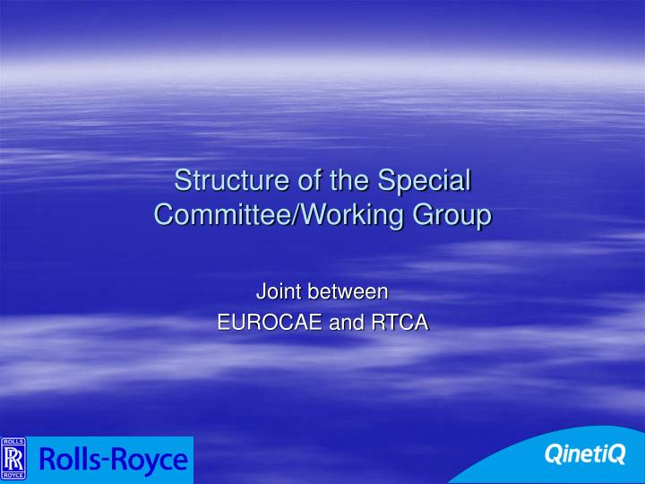 Structure of the Special Committee/Working Group