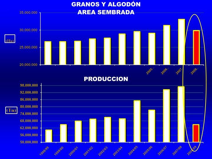 GRANOS Y ALGODÓN