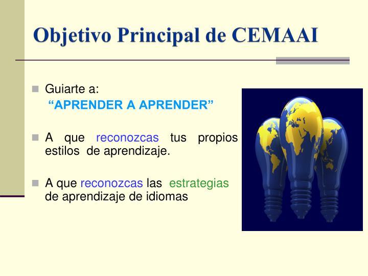 Objetivo Principal de CEMAAI