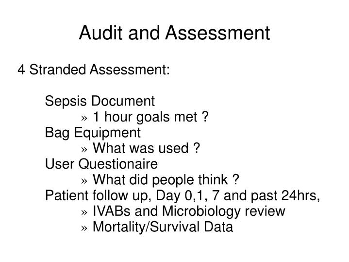 Audit and Assessment