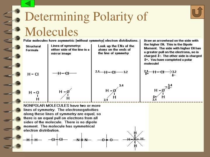 Determining Polarity of