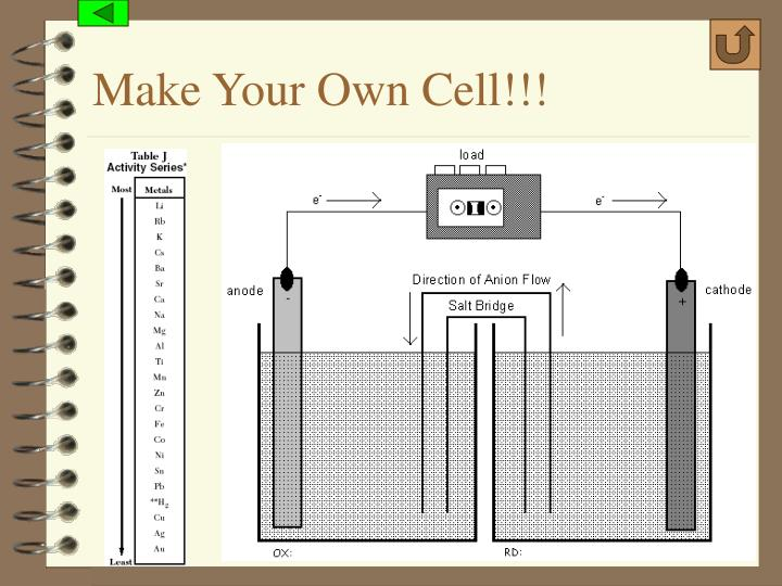 Make Your Own Cell!!!