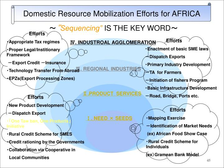 Domestic Resource Mobilization Efforts for AFRICA