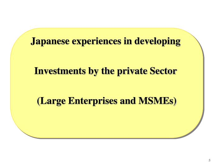 Japanese experiences in developing