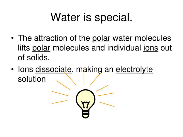 Water is special.