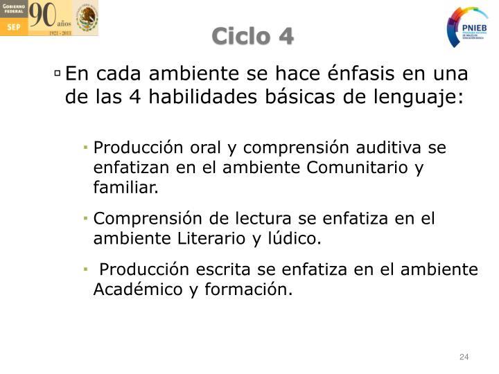 Ciclo 4