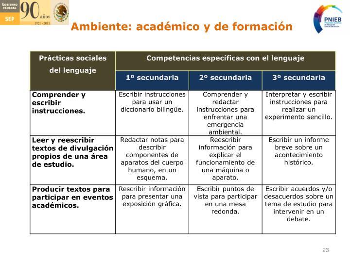 Ambiente: académico y de formación