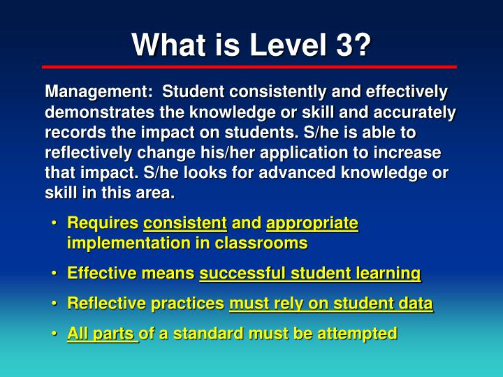 What is Level 3?